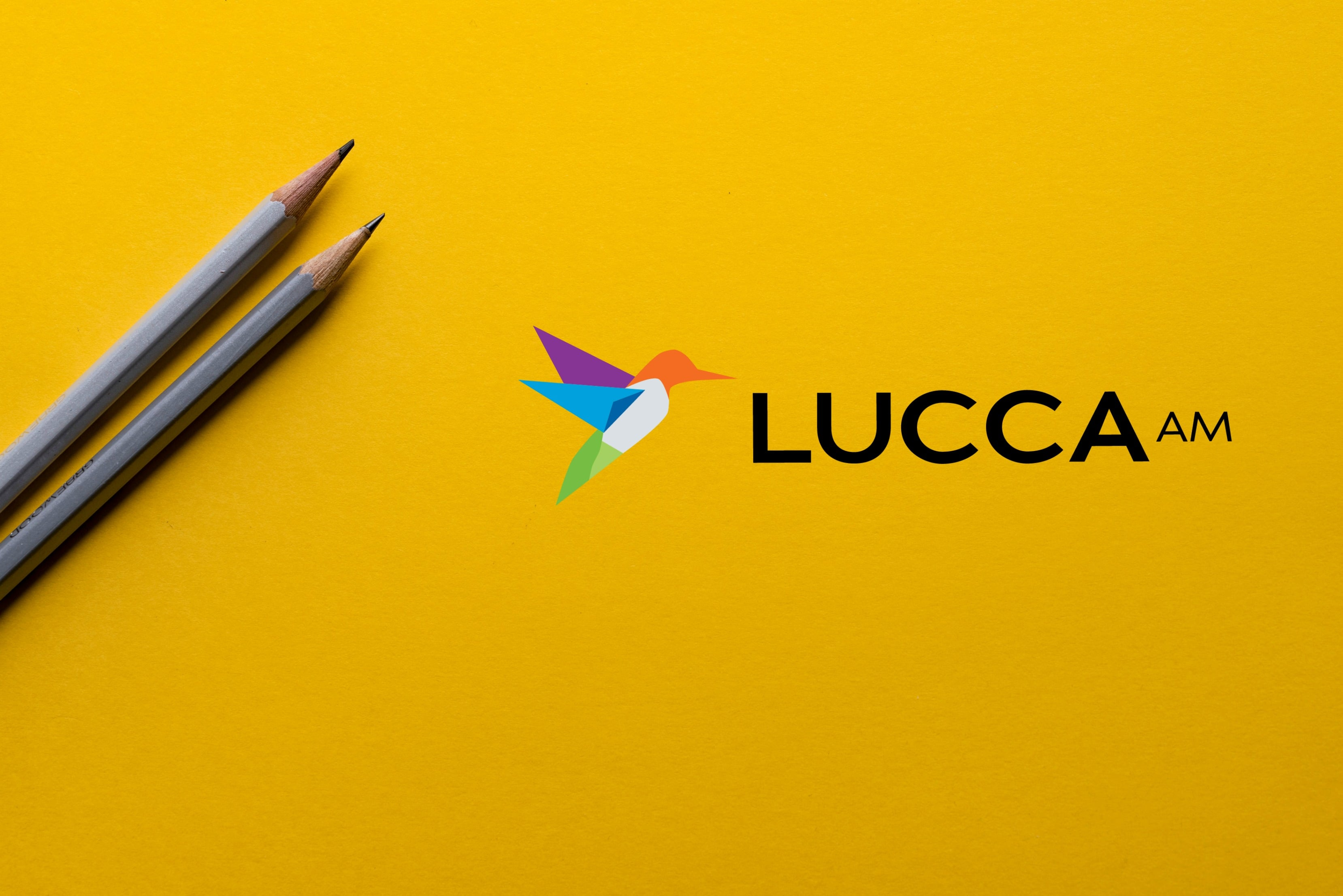 lucca am - design terms