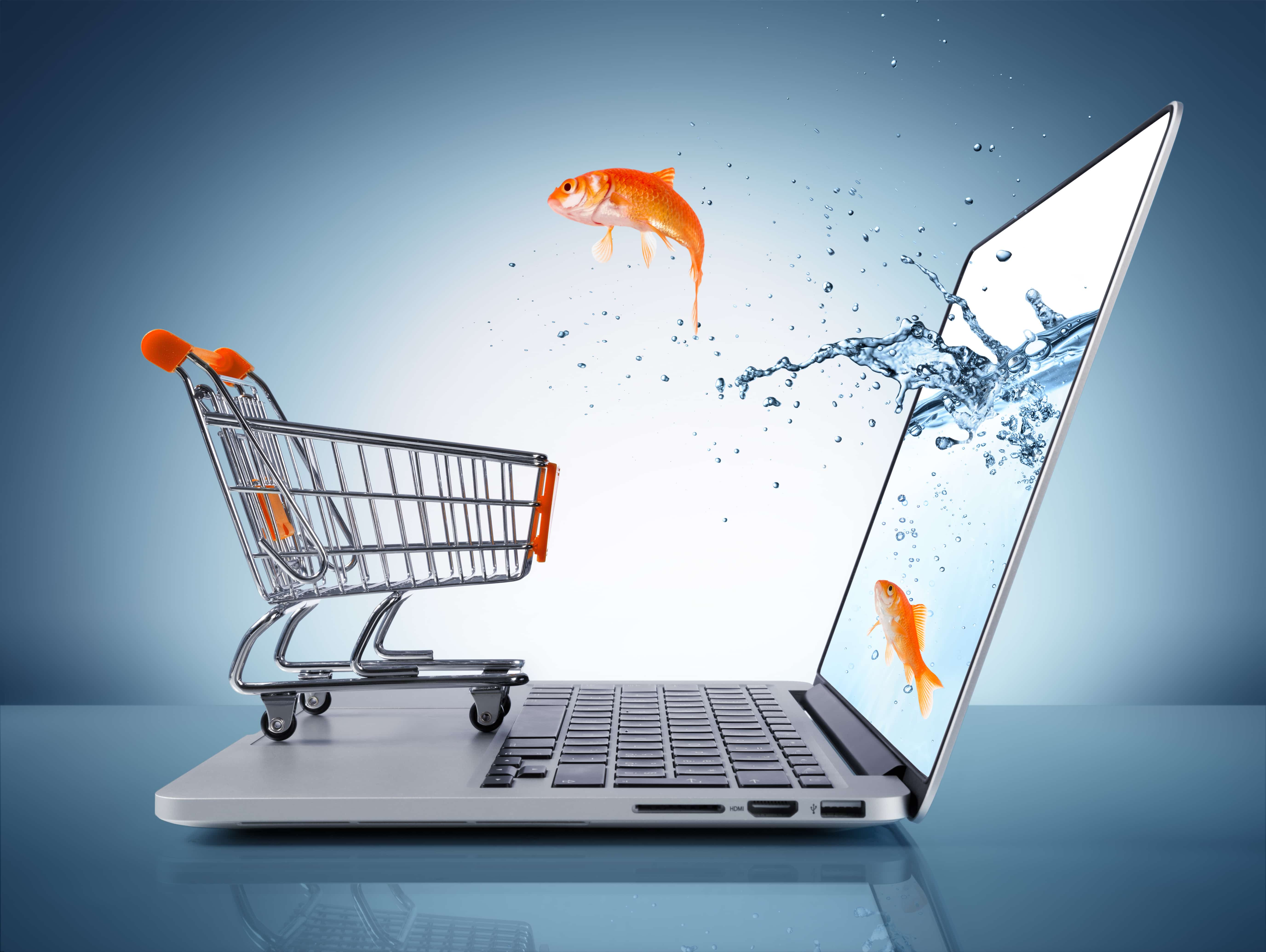 eCommerce – Why SEO Alone Isn't Enough